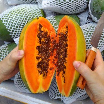 树上熟海南红心木瓜整箱冰糖心牛奶青木瓜大新鲜水果当季特产