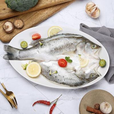 壹条鱼海鲈(约1斤)