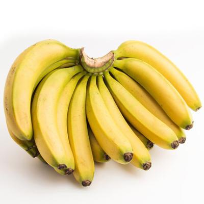 英德沙口镇香蕉10斤