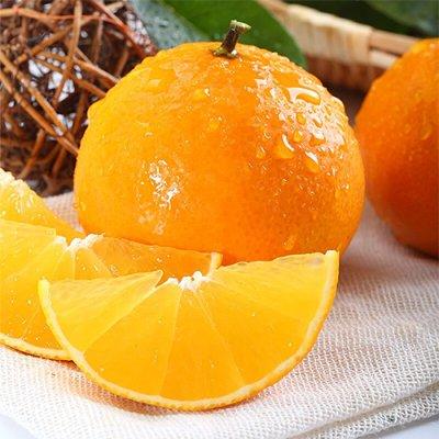 象山红美人橘 柑橘中的爱马仕 5.4斤装