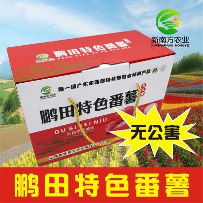 【预定】 新南方农业新鲜红薯台湾相思红 番薯现挖农场自种无公害