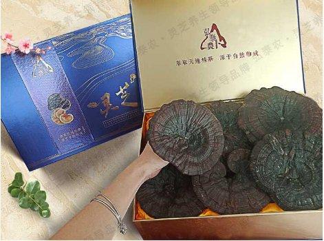 灵芝800g 野生紫灵芝 自然环境生长灵芝 灵芝片礼品包装