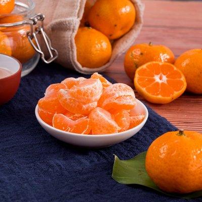 广东惠州春甜柑橘新鲜皮薄果汁充盈甘甜5斤装爱心帮困省内包邮