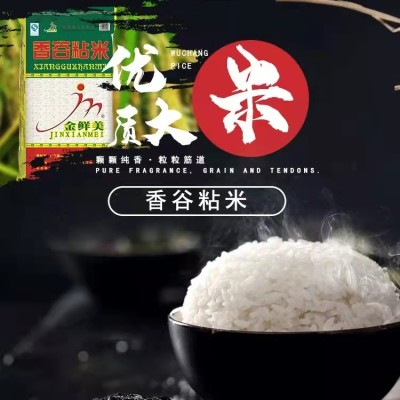 【佛冈扶贫产品】金鲜美 香谷粘米 香软南方大米15KG