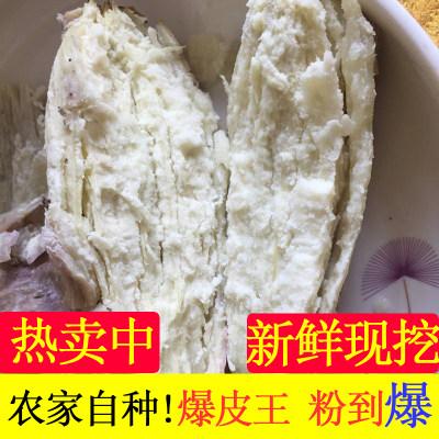新鲜农家自种爆皮王番薯板栗白肉面包王白心地瓜香粉糯