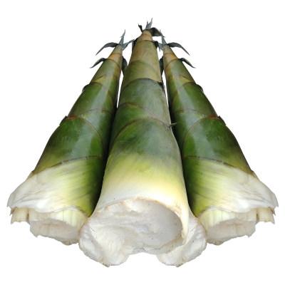 竹笋10斤