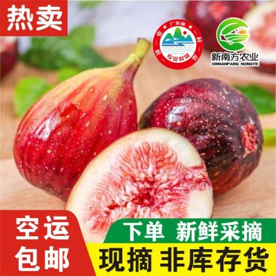 新南方农业 新鲜无花果 水果特产天然孕妇鲜果现摘 5斤装顺丰包邮(只发广东省内)