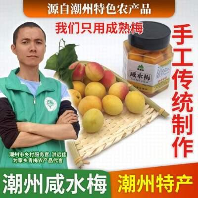 潮汕特产咸水梅/咸柠檬500G一罐 泡水蒸鱼水果佐料好搭档