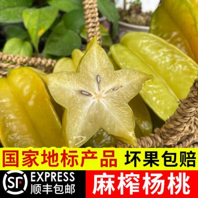 【顺丰包邮】果园现摘现发当季新鲜杨桃精品5斤装清甜爽口