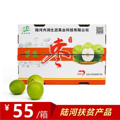苹果枣-礼盒装