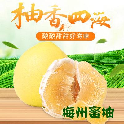 梅州白肉蜜柚
