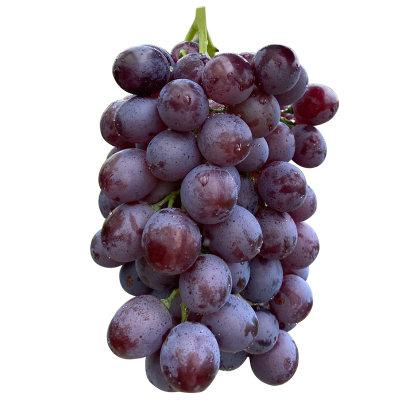 黑葡萄4斤