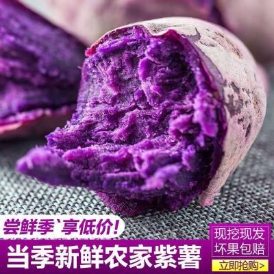 新鲜巴马农家现挖紫薯地瓜香甜番薯5斤包邮