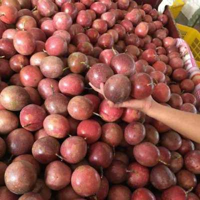 百香果5斤