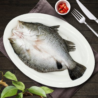 集元龙斑鱼(约1斤)