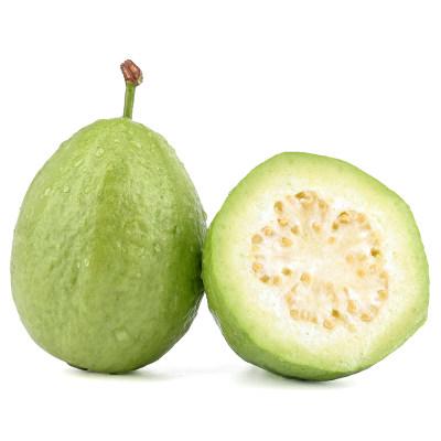 珍珠番石榴 2.5kg 芭乐 白心石榴 新鲜水果