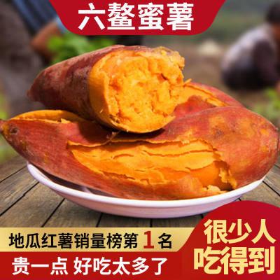 正宗六鳌沙地蜜薯红心新鲜现挖超甜软糯农家自种福建优质番薯食用