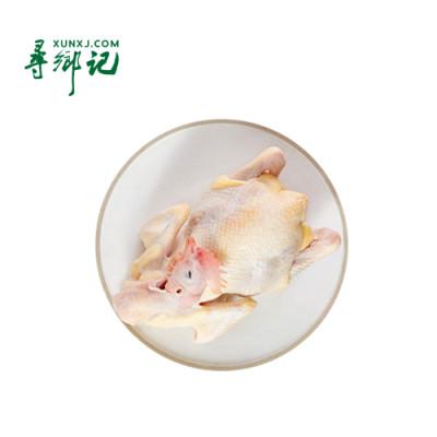 凤中凰清远麻鸡168天约800g/只